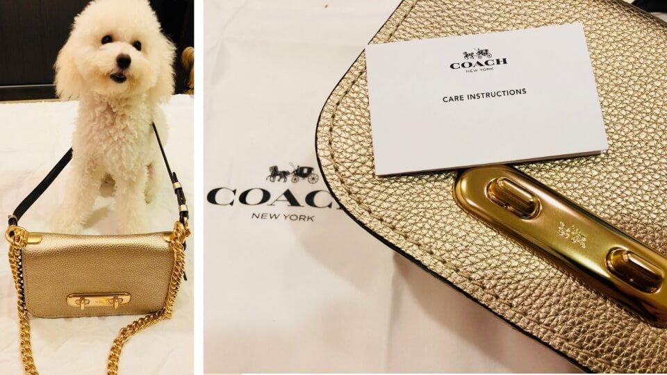 開箱|COACH包包 Swagger 20 Shoulder Bag 鉑金色。購自精品折扣網YOOX(內附教學)